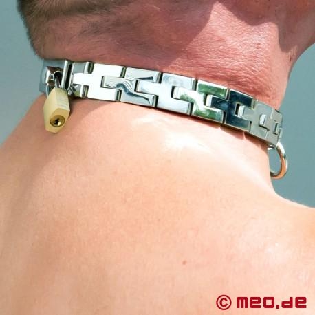 Lockable Neck Collar