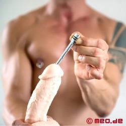 Penis Plug Omega