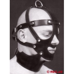Slave Head Harness