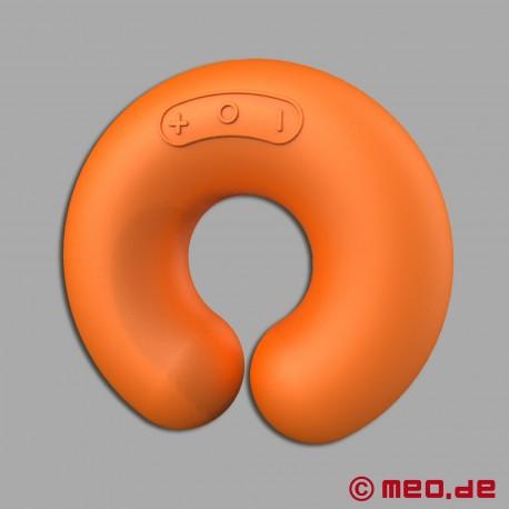 ZINI - Donut