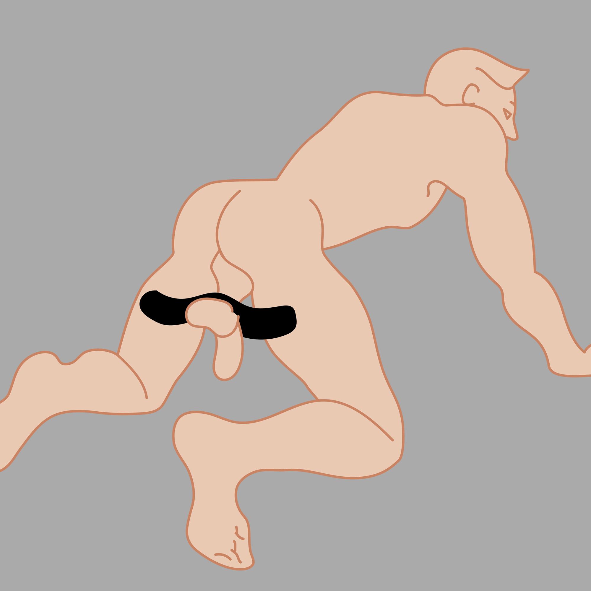 Penis și testicule