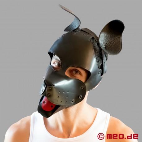 Good Boy - Maschera da cucciolo - Macchina da cane