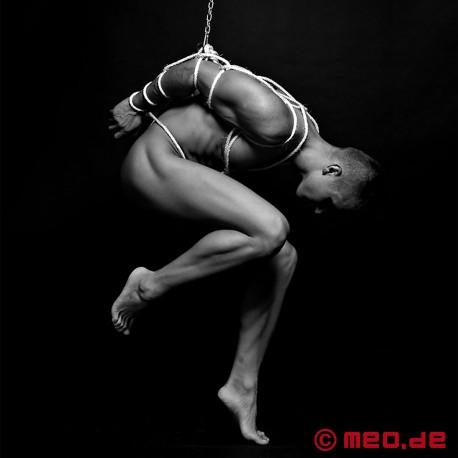 Anello di sospensione Shibari bondage