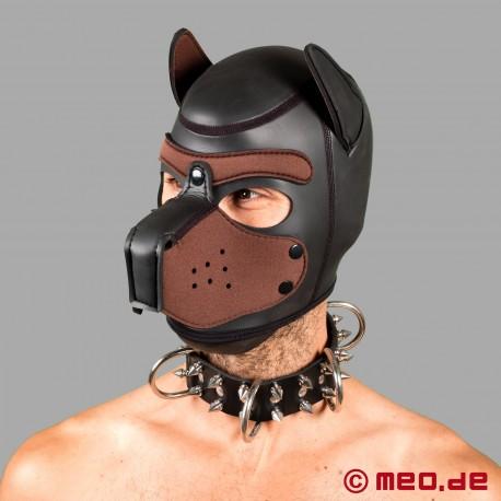 Collare da cane in pelle con spuntoni - maschio alfa