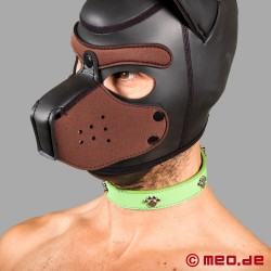 Collare di cane bad puppy - Fetish