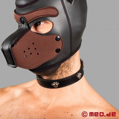 Bad Puppy Dog Collar - Fetish Collar