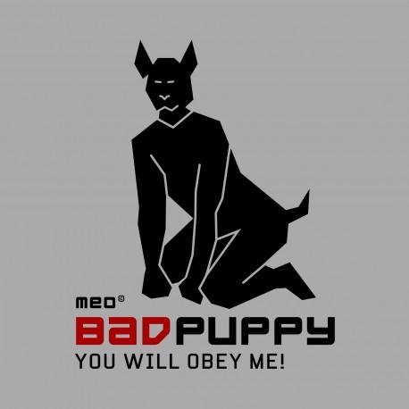 BAD PUPPY: Guinzaglio con catene e tirante in pelle