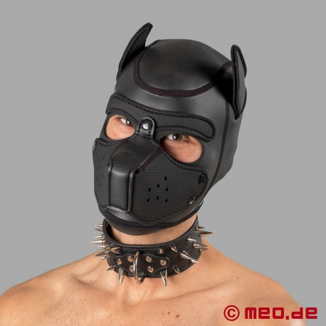 Black spiked collar for the human pup