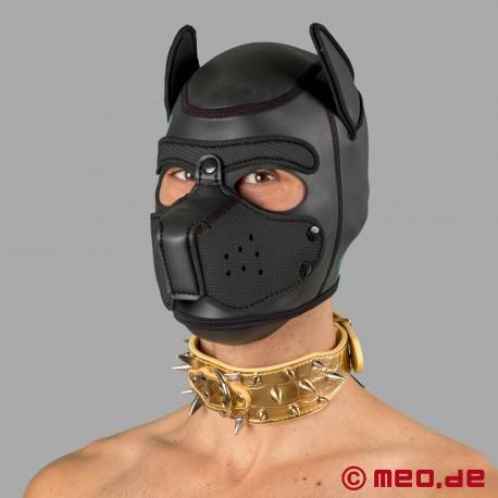 Collier à pointes doré pour chien humain