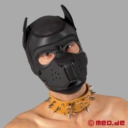 Collare marrone con borchie appuntite per Human Pup