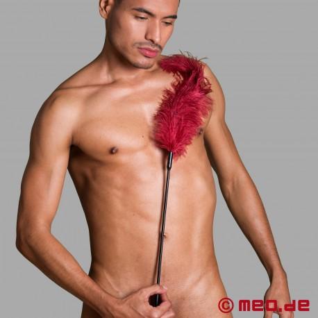 Ostrich Tickler - burgundy
