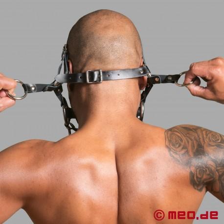 Pony Zaumzeug - Kopfharness & Trensenknebel