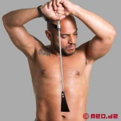 Luxurious SM riding crop