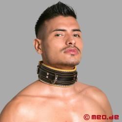 Bondage Halsband schwarz/gelb Code Z