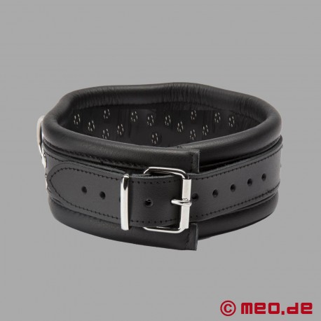 BDSM collar in leather with spikes and D-rings