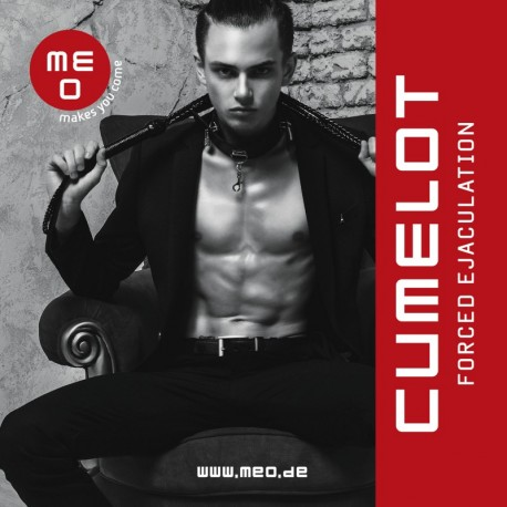 The Pointer Vibe CUMELOT – The best men's vibrator in the world