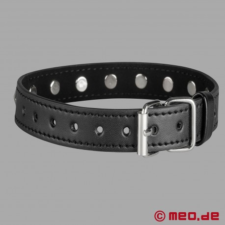Bondage leather collar with rivets black/silver