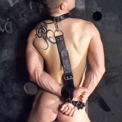 Various Restraints